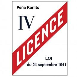 Modèle plaque licences