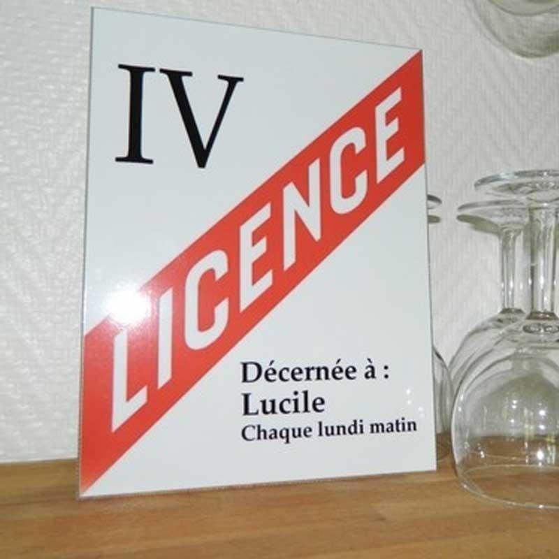 licence 4 alu