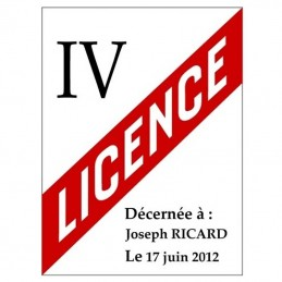 plaque licence 4